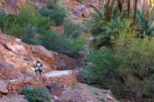 Into Aguinan canyon