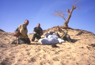 At the Lost Tree (Tenere desert)
