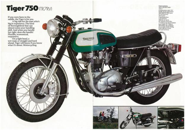 78-tiger