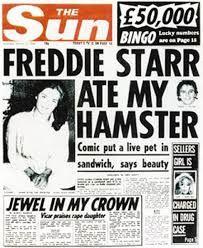86-hamster