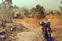 Tracks in west Mali